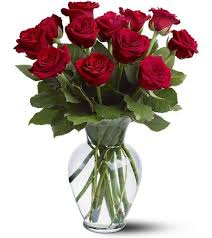 how much does a dozen roses cost best 25 dozen of roses ideas on dozen roses