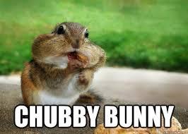 Chubby Meme - chubby bunny squirrel quickmeme