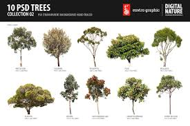 10 psd trees collection 2 objects creative market