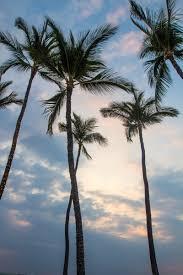 postcards from hawaii u0027s big island