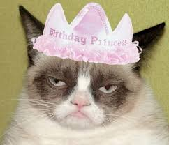 Birthday Meme Cat - grumpy cat birthday blank template imgflip