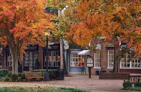 mr williamsburg u2014 revolutionary ideas in williamsburg real estate