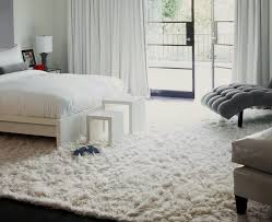 9 X12 Area Rug Area Rugs 9 X 12 Home Design Ideas And Pictures