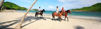 st lucia horseback riding tours