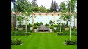 garden trees small garden trees uk ornamental trees for small