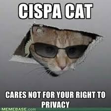Cat Internet Meme - internet memes cispa cat the basement cat of the supposed ceiling