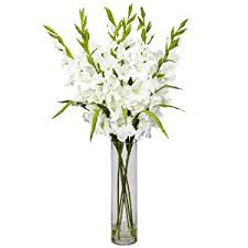 Silk Flower Arrangements Amazon Com Nearly Natural 12401240 Wh Large Gladiola With