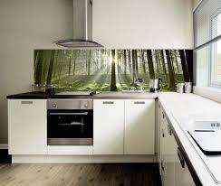 spritzschutz für küche 13407 spritzschutz kuche glas 5 images spritzschutz k 252 che