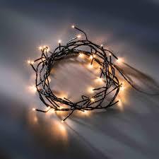 ledrise led christmas u0026 decoration lighting