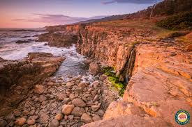 Discover The North Coast Visit California California State Parks