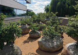 garden of stones by andy goldsworthy u2014 museum of jewish heritage