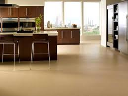 types of kitchen flooring ideas flooring ideas appealing types with awesome of for kitchen images