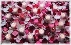 silk petals package of 4000 petals