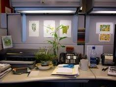 Ideas To Decorate An Office 5 Cool And Funny Office Cubicle Decoration Ideas Office Cubicle
