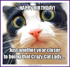 Funny Memes Cats - happy birthday memes with funny cats dogs and cute animals