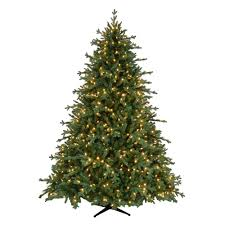 home accents 7 5 ft pre lit led royal spruce artificial