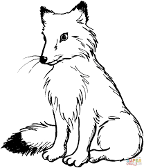 coloring page fox kids drawing and coloring pages marisa