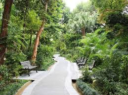Hong Kong Zoological And Botanical Gardens Hong Kong Zoological And Botanical Gardens Attractions In