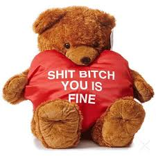 valentines bears something that isnt lovey dovey just or