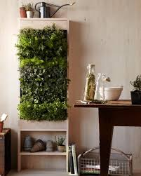 amazing kitchen vertical garden vertical gardens living walls