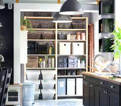 kitchen storage ideas ikea ikea kitchen storage kitchen storage cabinets looking best