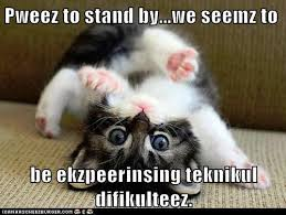 Whoops Meme - pweez to stand by lolcats lol cat memes funny cats