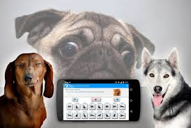 boxer dog noises human to dog sounds translator android apps on google play