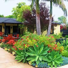 tropical garden design ideas brisbane landscaping gardening ideas