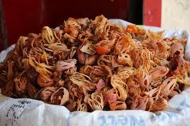 cuisine indon駸ienne l essentiel des épices du kerala en cuisine