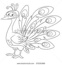 peacock cartoon stock images royalty free images u0026 vectors