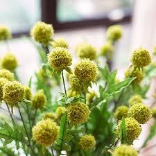 pot for artificial plants promotion shop for promotional pot for