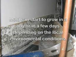 How To Dry Flooded Basement by How To Dry Out Water Damage Leaks Floods With Dehumidifiers And