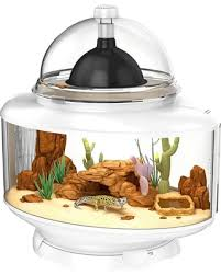 amazing deal biobubble terrarium reptile habitat 24