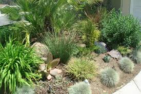 garden landscape category for exciting landscaping grasses