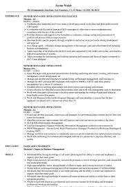 sle resume for business analysts duties of executor of trust senior manager operations resume sles velvet jobs