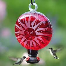 bird feeders yard envy