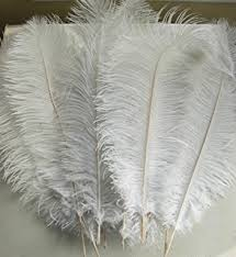 amazon com awaytr natural 20 22 inch 50 55cm ostrich feathers