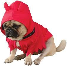 Dog Costumes Halloween 23 Spook Tacular Halloween Pets Images Animals