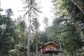 chambre d hote allemagne foret clairière aux cabanes un amour de chalet à la bresse en lisière