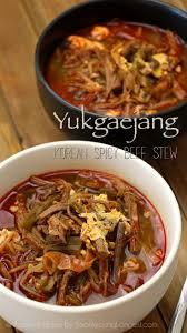 best 25 spicy beef stew ideas on pinterest spicy stew stewing