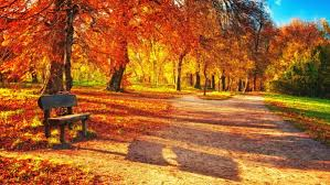 imagenes de otoño para fondo de escritorio los mejores 25 fondos de paisajes para descargar gratis fondos de