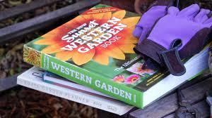 a southern california garden