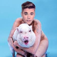 Justin Beiber Meme - justin bieber is naked and hugging a pig thanks to miley cyrus