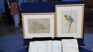1913 louis agassiz fuertes drawings u0026 sketches antiques roadshow