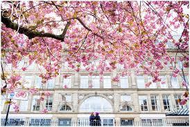 cherry blossom city pre wedding shoot jodie u0026 kate katie byram