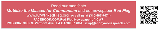 Mobilize Anti Flag Icwp Racism Pamphlet