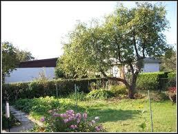 berlin garten kaufen berlin kleingarten kaufen garten house und dekor galerie