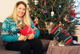 pups and cats join the ugly christmas sweater party toronto star