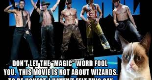 movie review quot magic mike grumpy cat grumpy cat movie and cat movie on pinterest