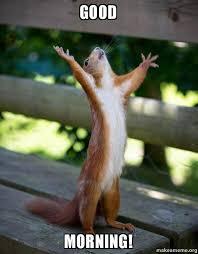 Goodmorning Meme - good morning happy squirrel make a meme